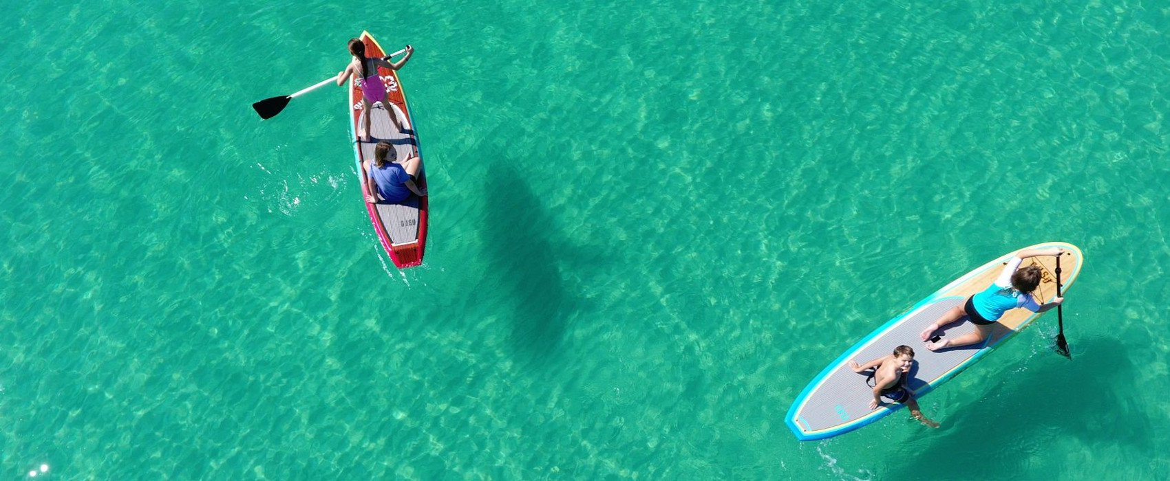 get dolphin cruises service
